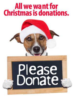 All we want for Christmas is donations!