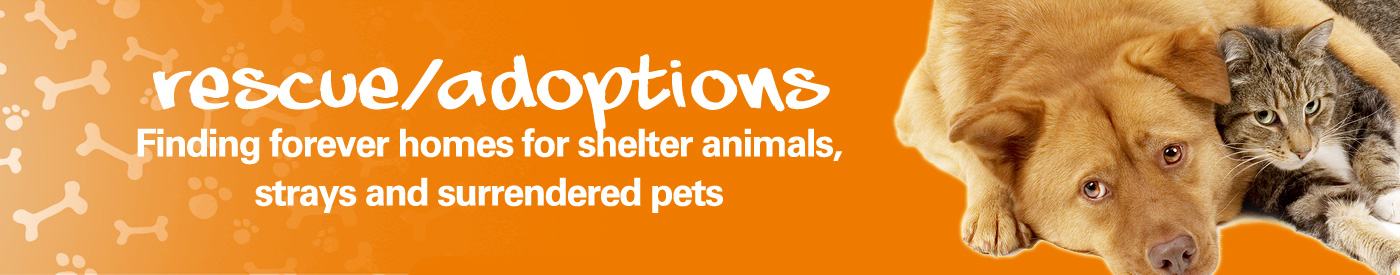 Animal Rescue and Adoptions