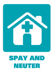 Spay Neuter Programs